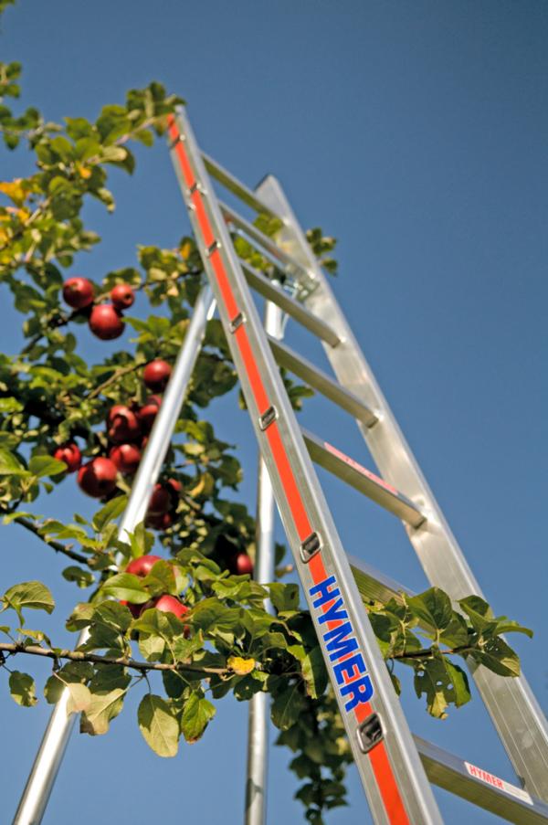 HYMER Obstbaumleiter einteilig mit ausziehbaren Stützen